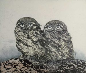 Owls etching by Vincent Sheridan 1980s