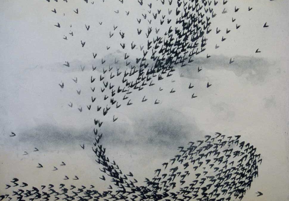 Starling Flight 1