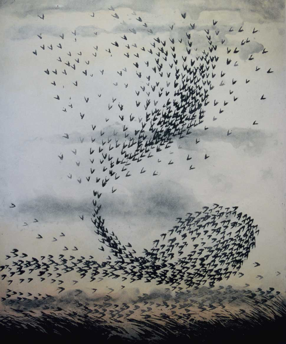 Starling Flight 1 etching by Vincent Sheridan 1980s