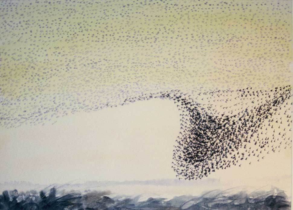 Starlings Ballinafagh watercolour by Vincent Sheridan 1970s