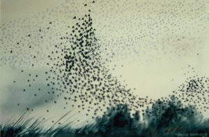 Starlings watercolour by Vincent Sheridan 1970s