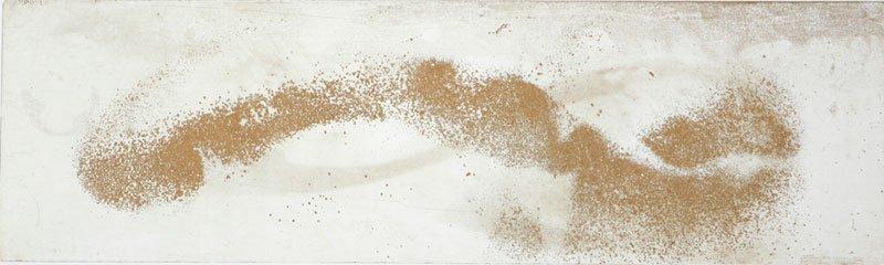 Vincent Sheridan print etching Bird Storm