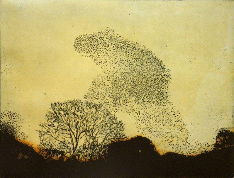 Vincent Sheridan print etching Murmuration
