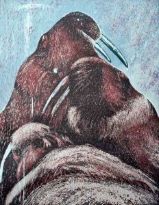 Walrus V relief print by Vincent Sheridan 1991